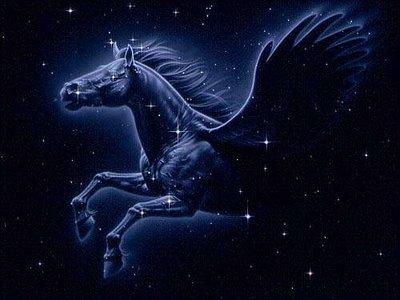 Pegasus_2